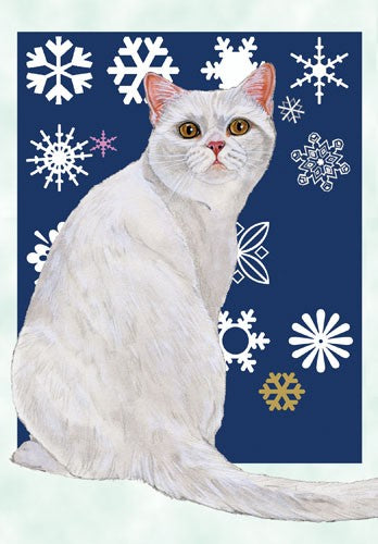 White Cat Christmas Cards