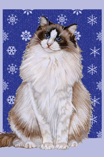 Ragdoll Cat Christmas Cards