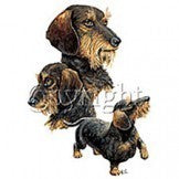 Wired Long Haired Dachshund Shirt