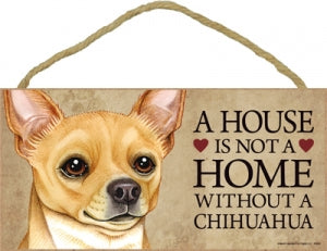 Chihuahua- Tan- A home is not a home