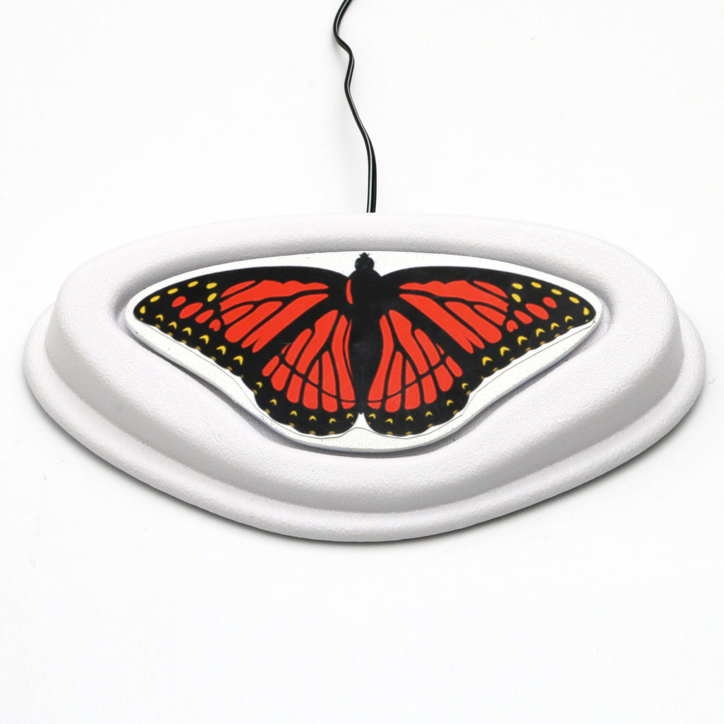 Butterfly Switch for Switch Adapted Toys