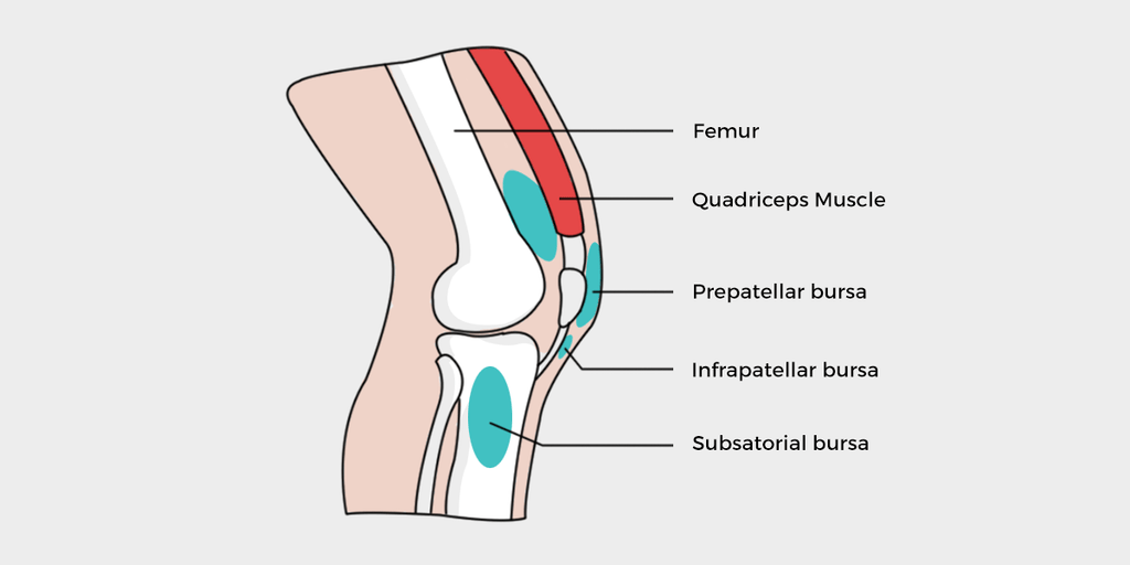 Bursitis knee the complete symptoms and treatment guide what causes bursitis of the knee ccuart Image collections