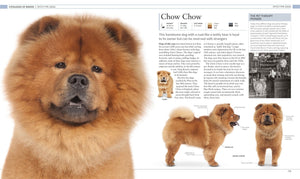 Dog Encyclopedia: The Definitive Visual Guide (DK)