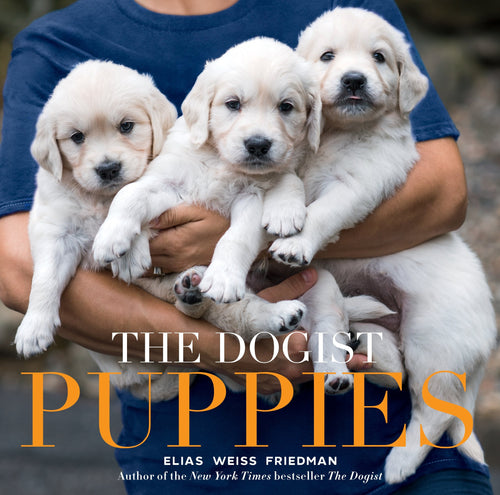 Dogist Puppies (Elias Weiss Friedman)