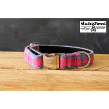 Hounds of Eden - Dara Harris Tweed Collar