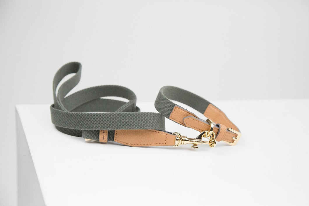 Max Bone - Niko Honey Collar and Leash set