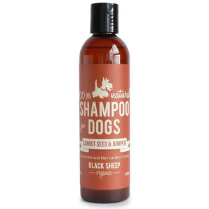 Black Sheep Organics - Carrot Seed & Juniper Organic Shampoo