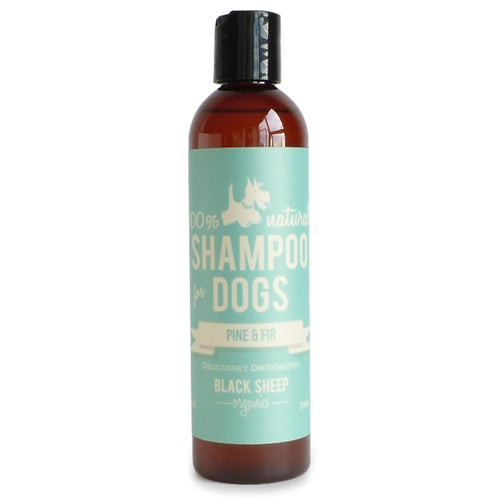 Black Sheep Organics - Pine & Fir Organic Shampoo