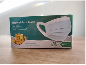 Disposable Face Mask (2 boxes)