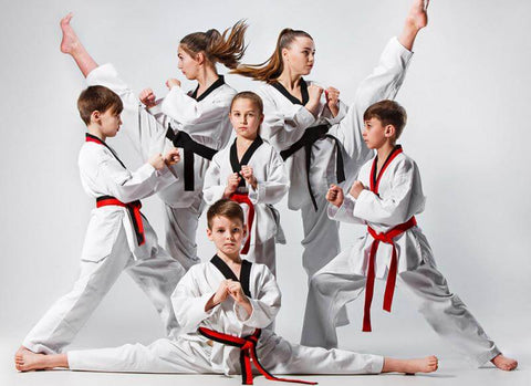 "Martial Arts Schools in the U.S. ""Affecting Nation?"" - MMA FIGHTLAND"