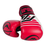 FUJI ASCENSION BOXING GLOVES-1