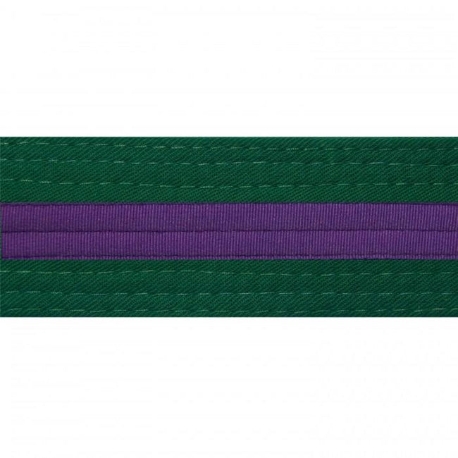 BOLD LOOK FOREST GREEN BELTS WITH STRIPE/PURPLE STRIPE-1