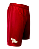 FUJI USA Judo Elite Workout Shorts-Red-4