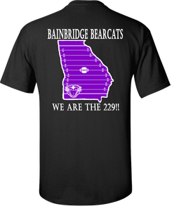 Bainbridge Bearcats