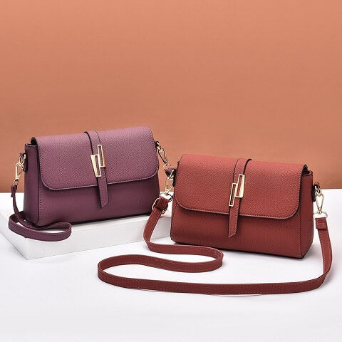 Gracelyn Alexander handbag can be transformed from a crossbody bag to a clutch and evening bag to suit your ensembles.