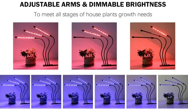 Hikari™ Full Spectrum LED Grow Lights for indoor plants can fully shine according to your ideal angle in greenhouses, balconies, and offices due to the gooseneck with adjustable curvature and the bottom clamp.