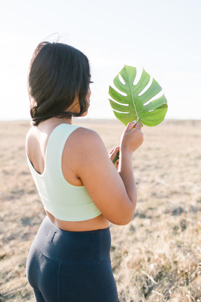 Sunset Crop Bra - Palm / Green - Nourish Sweat Soul