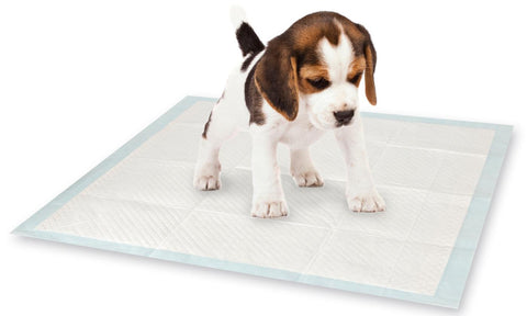 10 Pack Puppy Training Pads
