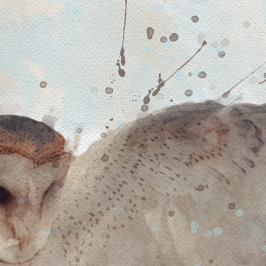 Barn Owl: Watercolor Illustration Wildlife Art Print