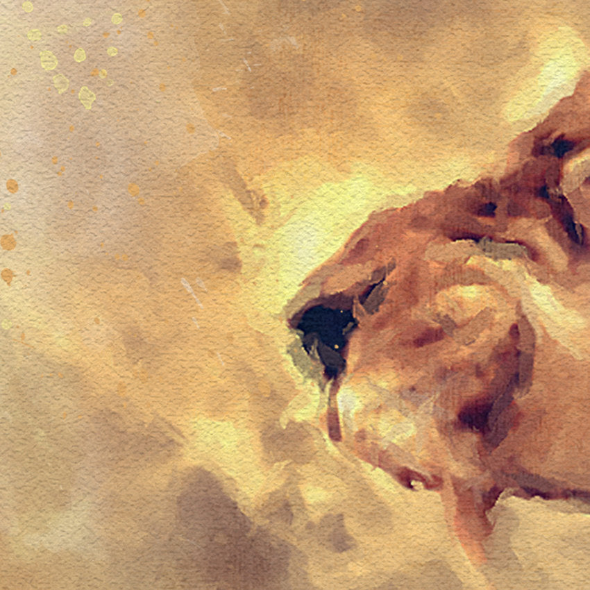 Lion: Watercolor Illustration Wildlife Art Print