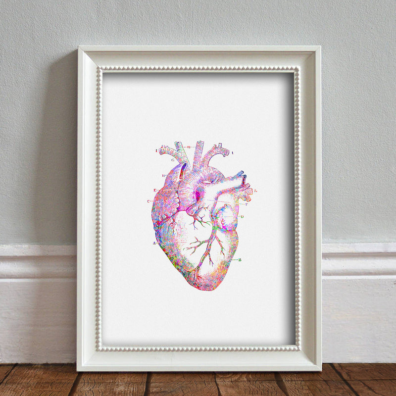 Heart Anatomy: Watercolour Print For Nursery, Home Décor - Science Series