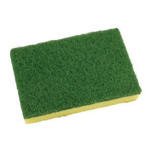 Oates Contract Sponge Scourers