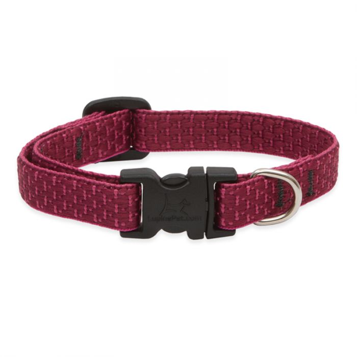 Lupine ECO Adjustable Dog Collar- Berry