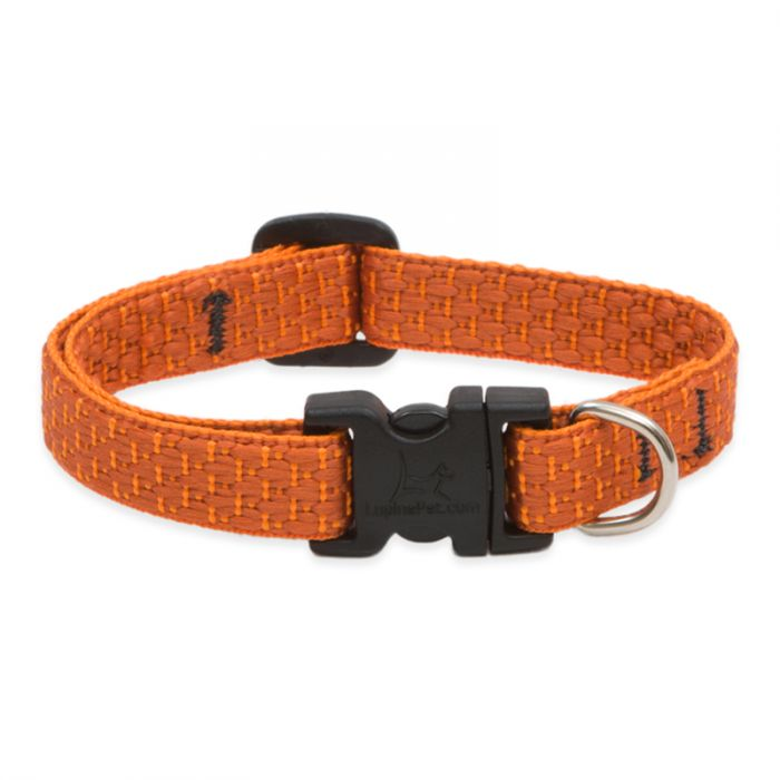 Lupine ECO Adjustable Dog Collar- Pumpkin