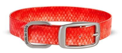 Dublin Dog KOA Red Snapper Collar