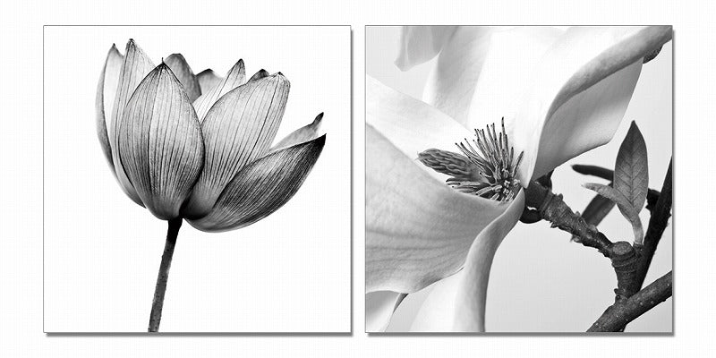 Modrest White Composition 2-Panel Photo On Canvas