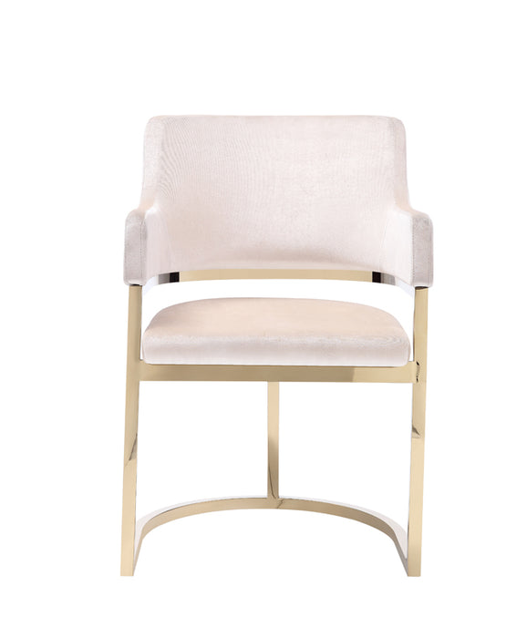 Modrest Tulsa Modern Cream Velvet & Gold Dining Chair