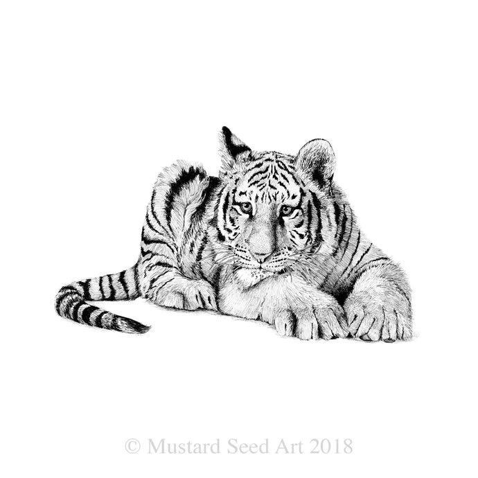 Tenacious Little Tiger - ON SALE