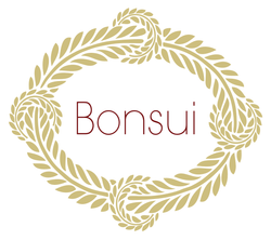 Bonsui Logo and collection at Harvest Beauty