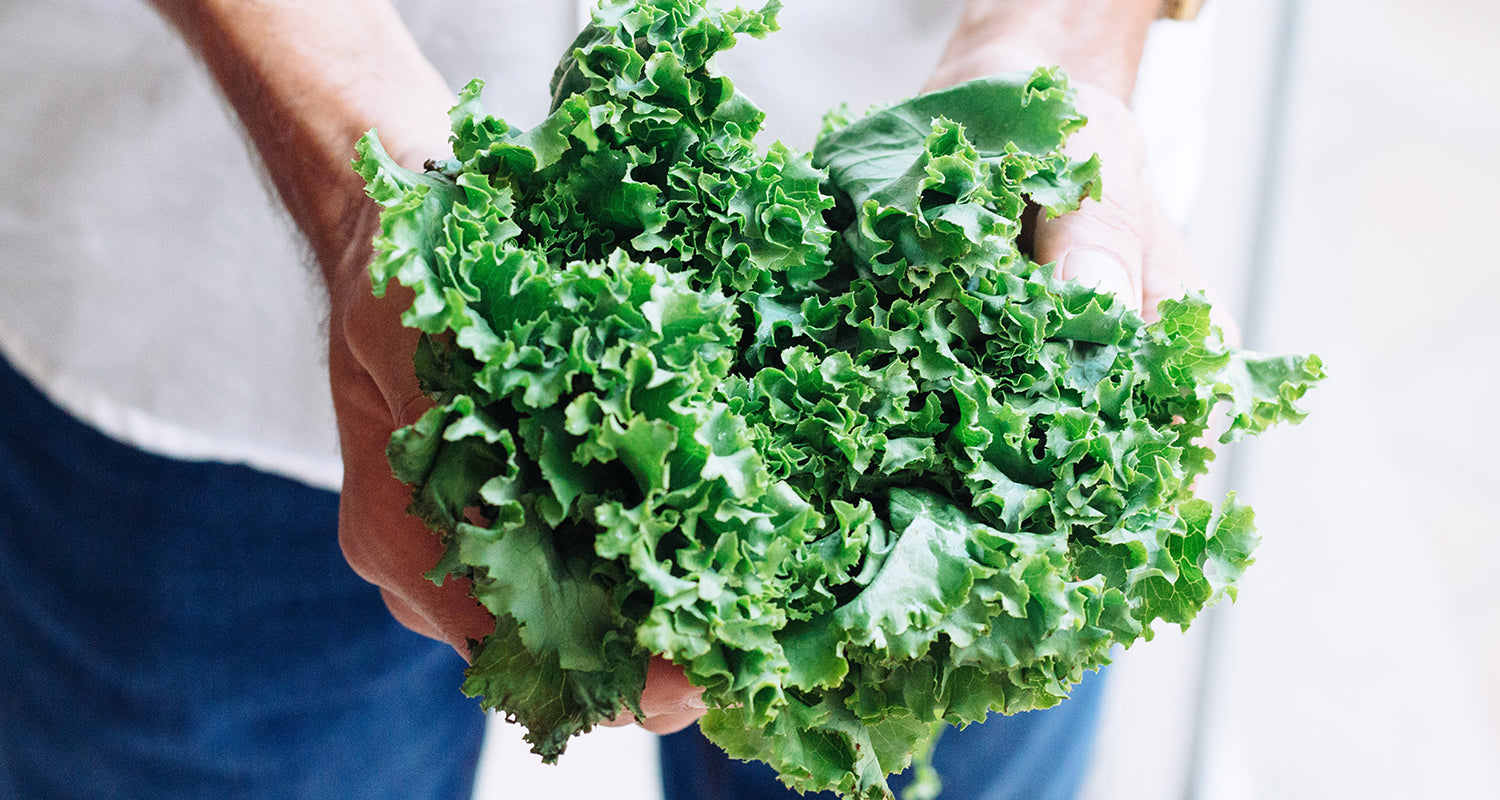 A handful of kale to represent clean eating and a balanced diet