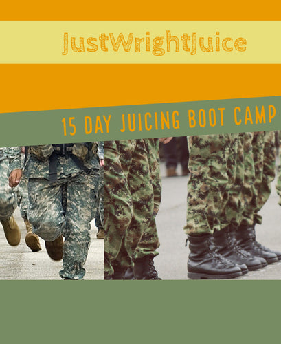 15 DAY JUICING BOOT CAMP GUIDE (ebook) - JUSTWRIGHTJUICE