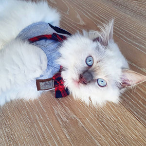 Jacket + Leash Cat Harness