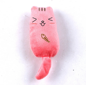Funny Face Catnip Toy