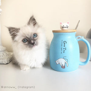 Cute Kitty Cat Ceramic Mug With Spoon