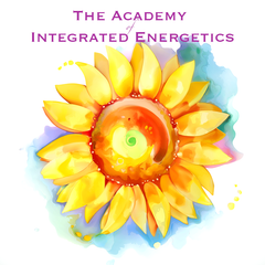 The Academy of Integrated Energetics