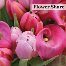 CSA - Flower Share Pro-Rate $30.00