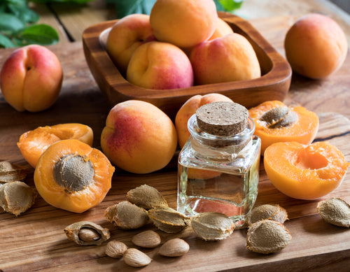 Featured ingredient Apricot oil