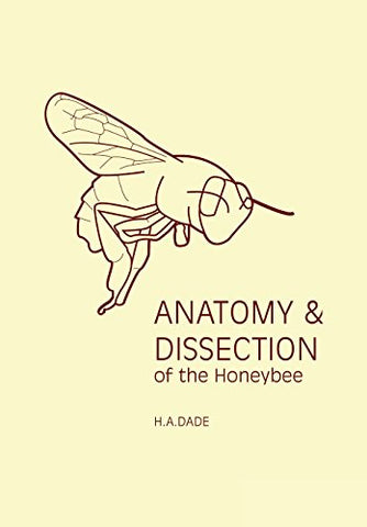 Anatomy and Dissection of the Honeybee