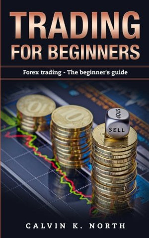 Trading For Beginners: Forex Trading: The Beginners Guide (Forex, Forex for Beginners, Make Money Online, Currency Trading, Foreign Exchange, Trading Strategies, Day Trading)