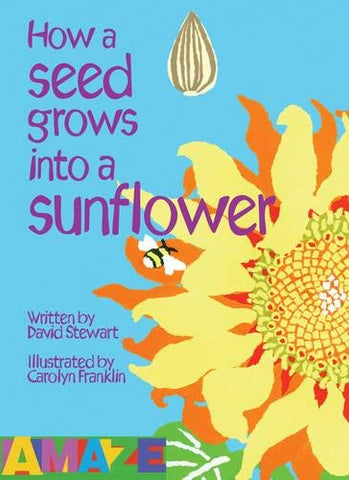 How a Seed Grows into a Sunflower (Amaze)