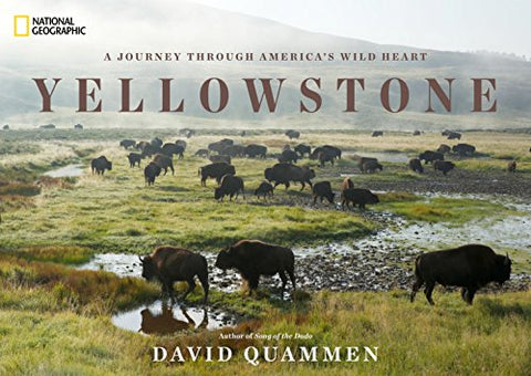 Yellowstone: A Journey Through America's Park