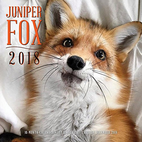Juniper Fox 2018: 16 Month Calendar Includes September 2017 Through December 2018 (Calendars 2018)