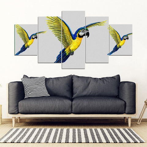 Blue And Yellow Macaw Parrot Print 5 Piece Framed Canvas- Free Shipping