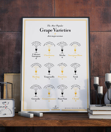 wine grapes grape aromas journey through wine