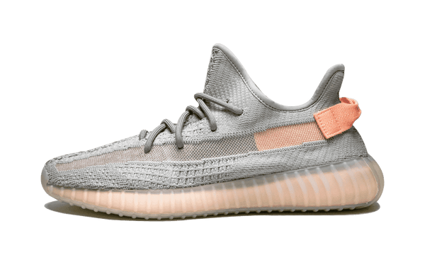 "Adidas Yeezy Boost 350 V2 ""True From"""