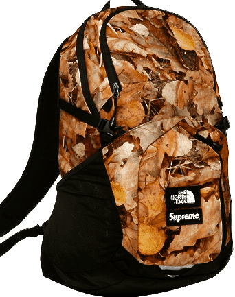 Supreme x The North Face Leaves Backpack